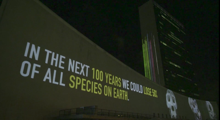 Racing Extinction Premiere: December 2, 2015: 9PM Local Time Discovery premieres Louie Psihoyos' Racing Extinction film in more than 220 countries and territories around the world.