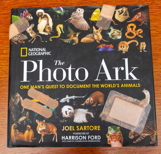 Photo: Image of a damaged Photo Ark book for illustrative purposes.
