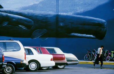 Photo: Mural of a whale in Florida's middle keys.