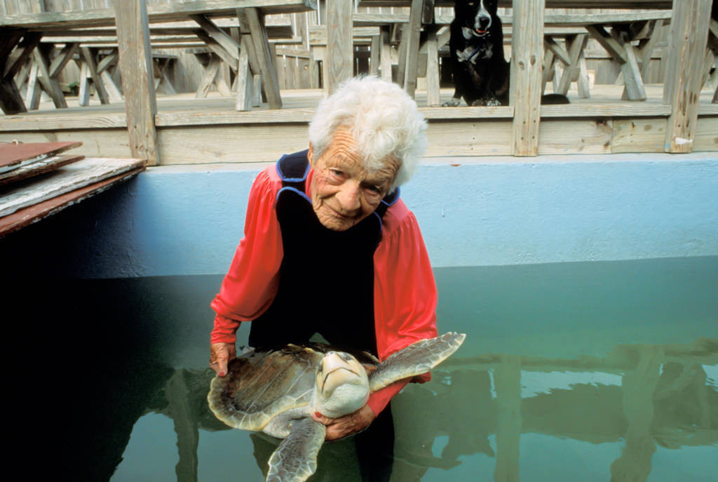 "Photo: The late Ila Loetscher (d. 2000), ""the turtle lady"" worked to save the reptiles on South Padre Island, Texas."