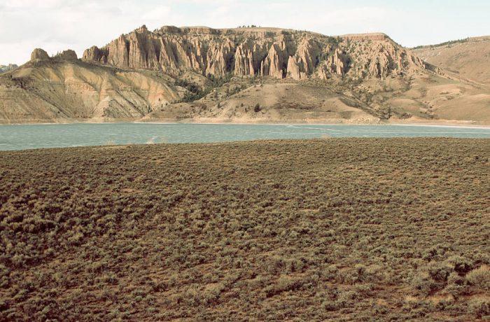 Photo: Gunnison's prairie dog sage brush habitat near Craig, Colorado.