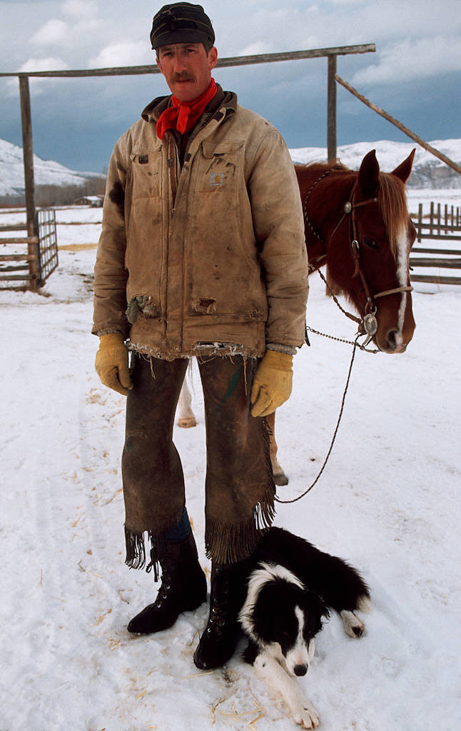 Photo: Rancher Mark Ellis with his horse and border collie.