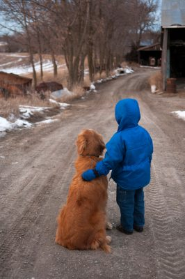 Photo: A young boy stands in a gravel road with a golden retriever.