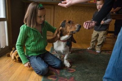 Photo: A family tempts their basset hound with treats in a Nebraska home.