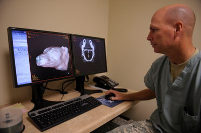 Photo: A technician shows a CT scan of a dog, revealing the animal's bone structure at the Military Working Dog (MWD) unit of Lackland Air Force Base in San Antonio.