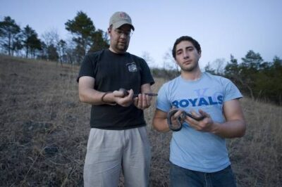Photo: Two biologists catch snakes in the Ozarks of southern Missouri.