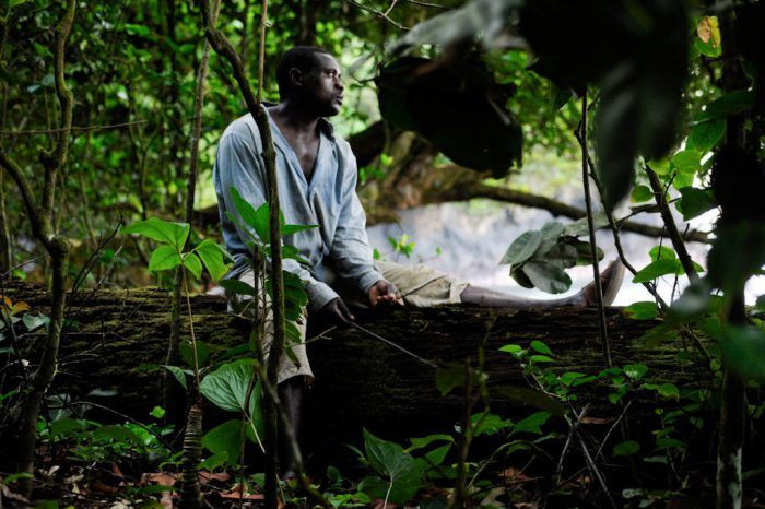 Photo: A man scouts for monkeys in the coastal forest of Bioko Island.