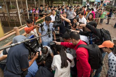 Photo: Media crowds around a critically endangered Yangtze giant softshell turtle (Rafetus swinhoei) at the Suzhou Zoo in China.