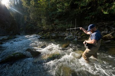 Photo: A fisheries technician for dam owner Avista, uses a radio antenna to track tagged bull trout in a stream that feeds into Noxon Reservoir.