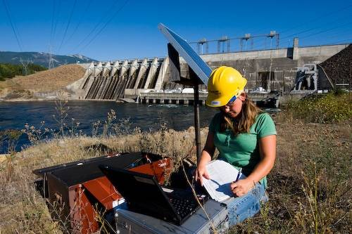 A fisheries technician for Avista, checks a monitoring station for radio-tagged bull trout (Salvelinus confluentus) at the base of Noxon Rapids Dam, Montana. (US: Federally threatened; IUCN: Vulnerable)