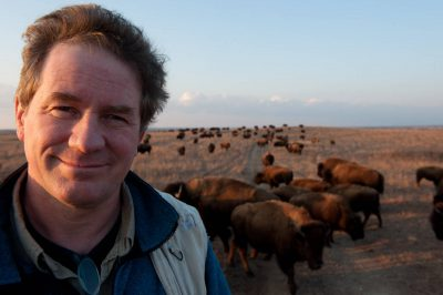 Photo: Joel Sartore,National Geographic photographer, standing amongst a herd of bison (Bison bison) on the prairie at Maxwell State Game Preserve in Canton, Kansas.