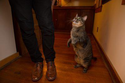 Photo: A man and his cat, Georgia.