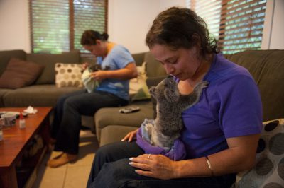 Photo: Deidre de Villiers and her sister Michele are raising two orphaned koalas at their home in Queensland.