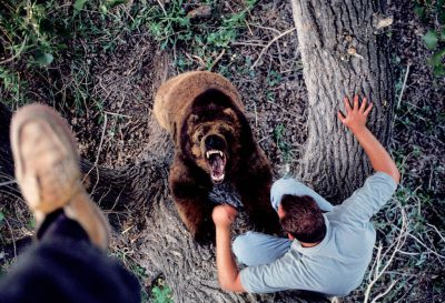 Photo: Trainer Scott Handley works with one of his bears in a park in California.