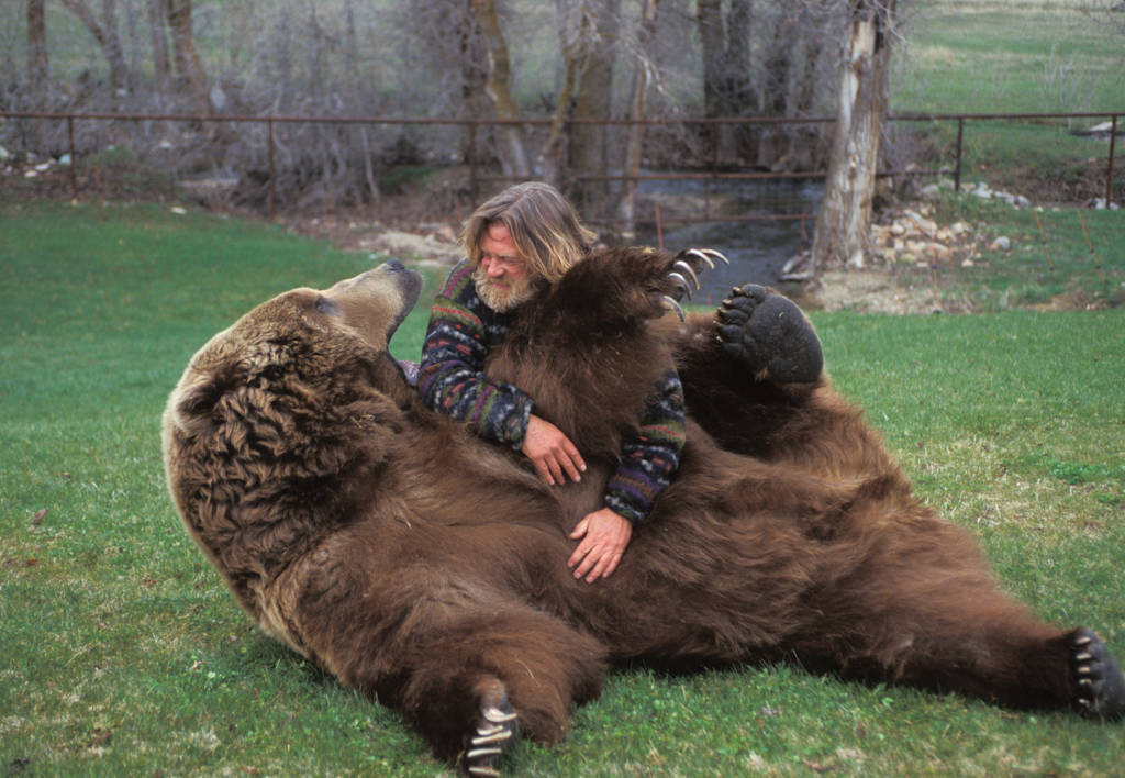 Photo: A man laughs with Bart the Bear, a 1700 lb. Kodiak and the star of movies and television, at their training facility in Utah.