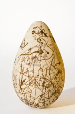 A California murre (Uria aalge californicus) egg from a collection at the University of Nebraska State Museum.
