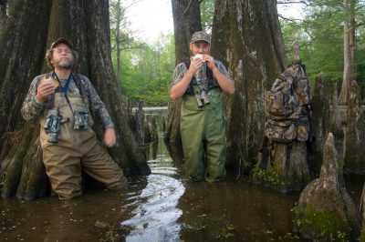 Photo: Biologists from Cornell eat their lunch standing while searching for the ivory billed woodpecker in the White River National Wildlife Refuge in St. Charles, Arkansas.