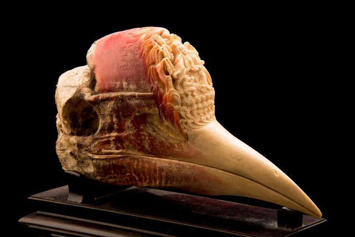 Photo: A helmeted hornbill head that's been carved intricately.