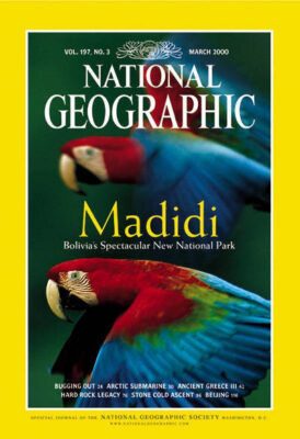 Photo: Joel Sartore's photograph of red and green macaws in Madidi National Park was featured on the March, 2000 cover of National Geographic magazine.