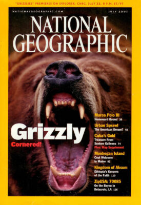 Photo: Joel Sartore's photo of a grizzly bear is featured on the cover of the July, 2001 issue of National Geographic magazine.