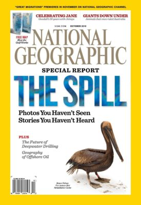 Photo: Joel Sartore's photo of an oil-covered pelican is featured on the cover of the October, 2010 issue of National Geographic magazine.