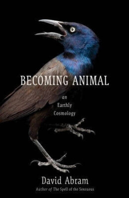 "Photo: Joel Sartore's photo of a male common grackle is featured on the cover of ""Becoming Animal"" by David Abram."