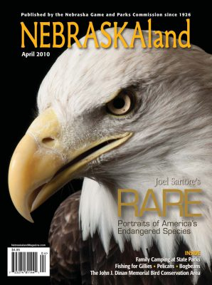 Photo: Joel Sartore's photo of a bald eagle is featured on the cover of the April, 2010 issue of NEBRASKAland magazine.