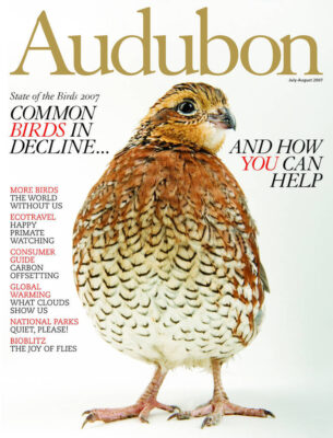 Photo: Joel Sartore's photo of a northern bobwhite quail is featured on the cover of the July-August 2007 issue of Audubon magazine.