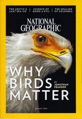 Photo: Why Birds Matter, January 2018 National Geographic Cover