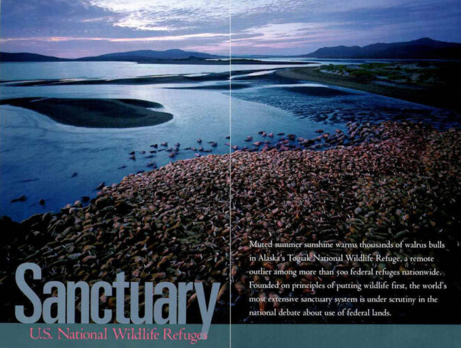 "Photo: The opening spread of the article ""Sanctuary: US National Wildlife Refuges"" in the October, 1996 issue of National Geographic magazine, featuring Joel Sartore's photos."