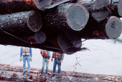 Photo: Old growth logs are readied for export in Washington state.