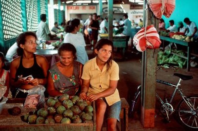 Photo: Forest fruits bacuri, piquia, and uxi being sold at a street market in Paragominas, Brazil.
