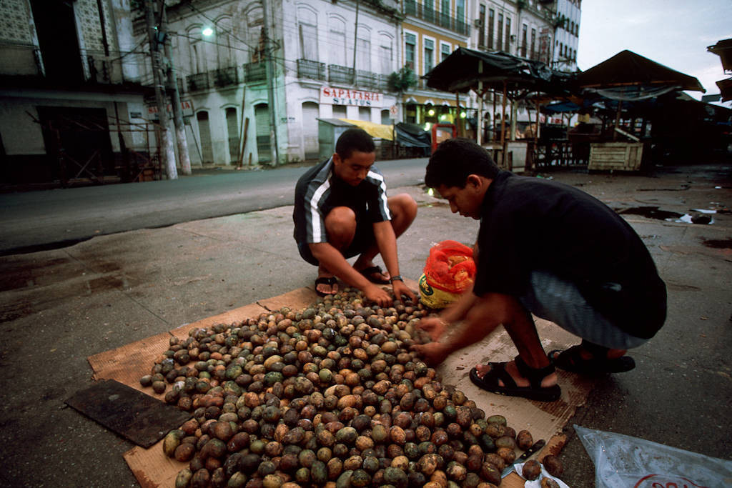 Photo: Uxi, a forest fruit, being sold at the Ver-o-peso-market inBelem, Brazil.