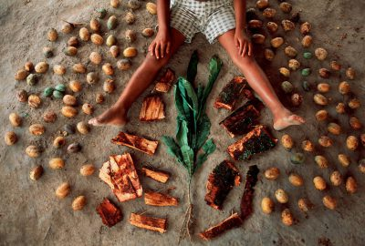 Photo: A young girl displays medicinal barks & leaves at a workshop on forest products in the Brazilian Amazon.