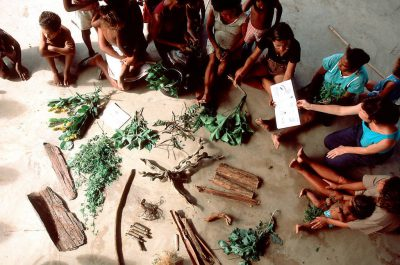 Photo: Patricia Shanley (holding book) leads a medicinal plant workshop at the village of Quiandeua along the Capim River in the Brazilian Amazon.