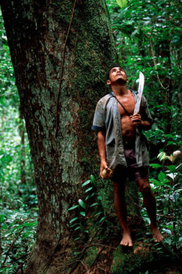 Photo: Hunter-gatherers still exist in the Brazilian Amazon, though in fewer numbers.