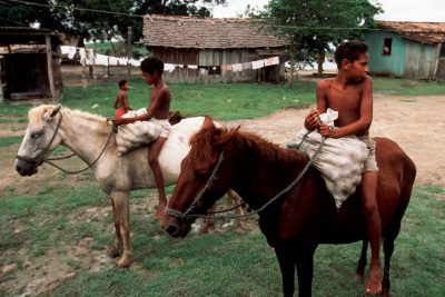 Photo: Forest fruits are moved by horseback from the small villageof Quiandeua to the bigger markets down river.