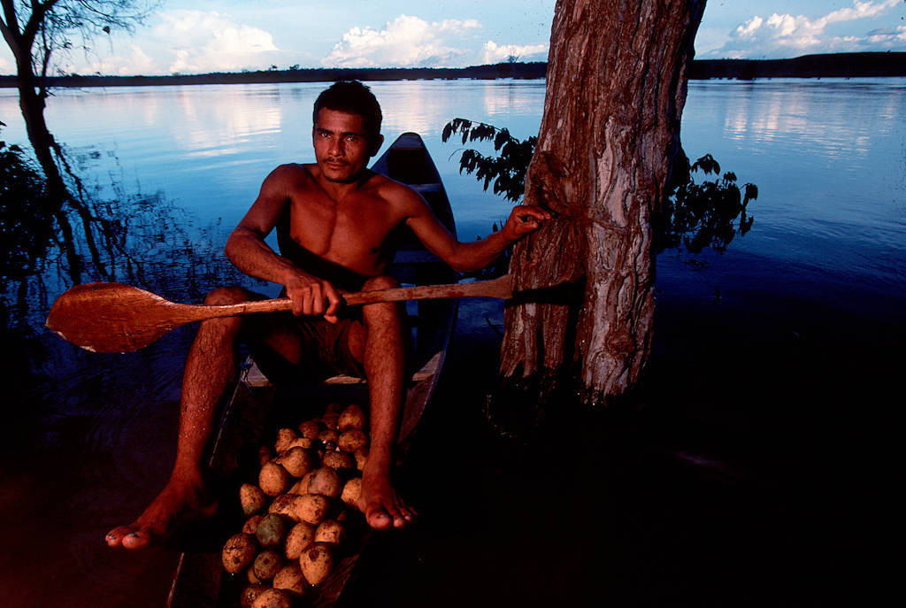 Photo: Forest fruits are moved by dugout canoe from the small village of Quiandeua to the city markets down river.