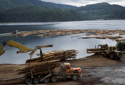 Photo: Logs from old growth forest on Vancouver Island, BC, are prepared and loaded for transport.