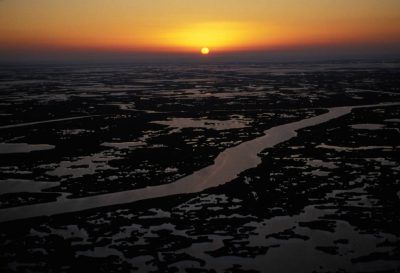 Photo: Man-made shipping canals carved through a southern Louisiana marsh have allowed saltwater to intrude, eroding the freshwater marsh ecosystem.