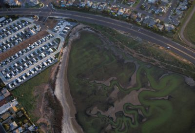 Photo: Housing & commercial development crowds around one of the few remaining wetlands in San Diego, CA.