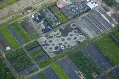 Photo: Aerial of agricultural development at the edge of wetlands near Miami, Florida.