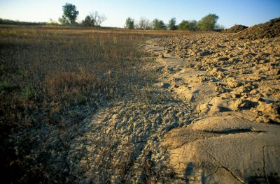 Photo: Run off from new construction in northern Lancaster County, Nebraska threatens the delicate saline wetland habitat that is home to the rare Salt Creek tiger beetle, a candidate for a federal endangered species listing.