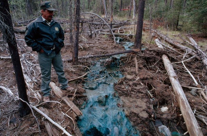 Photo: A forest ranger looks at heavy metal residue in Bucktail creek at Salmon National Forest in Idaho.