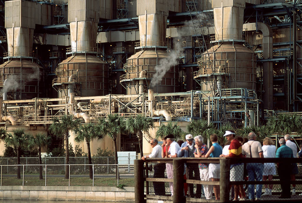 Photo: Tourists watch manatees in the shallow water near a coal-fired power plant in Apollo, Florida.