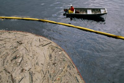 Photo: Congealed tallow, spilled in careless loading, cakes a section of the Houston shipping channel in Galveston Bay, Texas.
