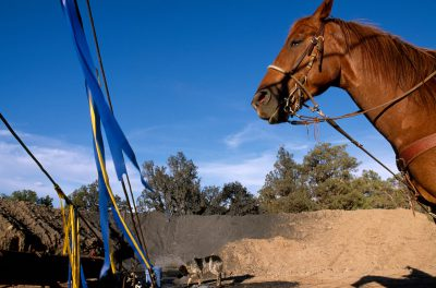 Photo: A horse and a dog on a ranch near a gas drilling area near Aztec, NM.