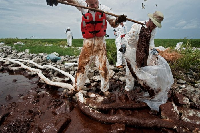 Photo: A BP clean up crew tries to sop oil from the Deepwater Horizon spill at Queen Bess Island, Louisiana.