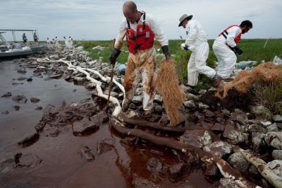 Photo: A clean up crew hired by BP tries to sop oil from the Deepwater Horizon spill, along the shoreline on Queen Bess island in Barataria Bay, Louisiana.