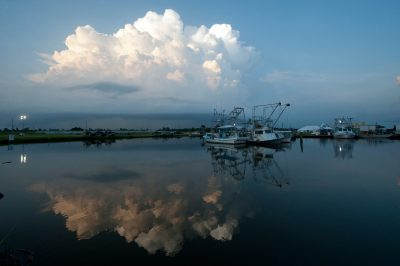 Photo: Shrimp boats sit idle at the Myrtle Grove marina in Belle Chasse, Louisiana.